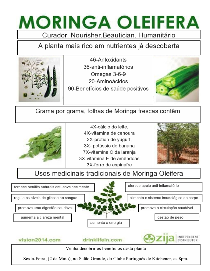 Moringa Portuguese Flyer
